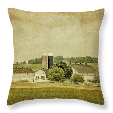 Rustic Farm - Barn Throw Pillow