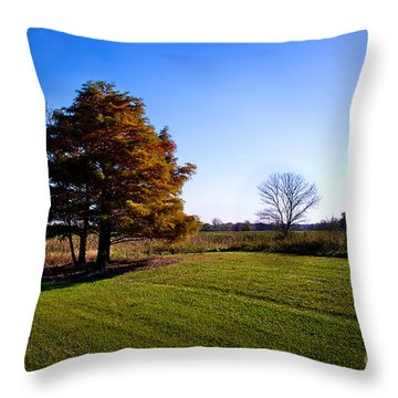Rustic Glory Throw Pillow
