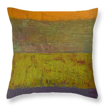 Rustic Layers 4.0 Throw Pillow