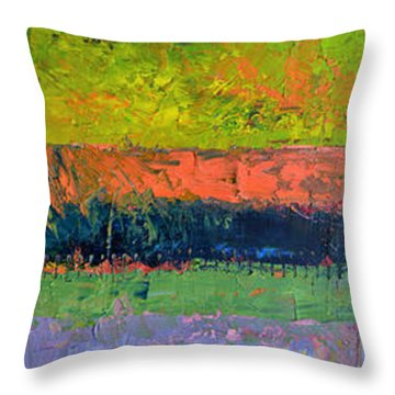 Rustic Layers  Throw Pillow
