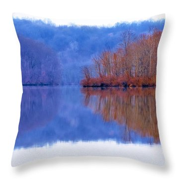 Rustic Reflections 3 Throw Pillow
