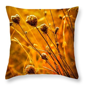 Throw Pillow featuring the photograph Rustic Weeds by Brian Stevens