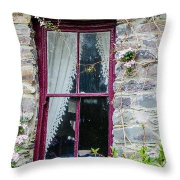 Rustic Window  Throw Pillow