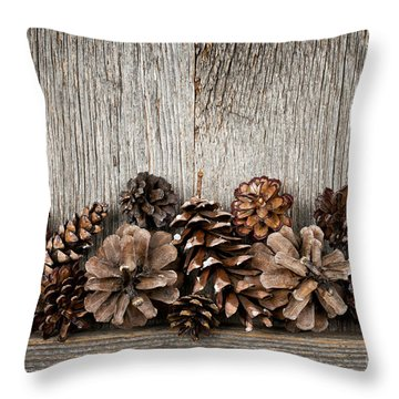 Rustic Wood With Pine Cones Throw Pillow by Elena Elisseeva
