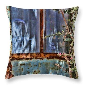 Rusty Charm By Diana Sainz Throw Pillow