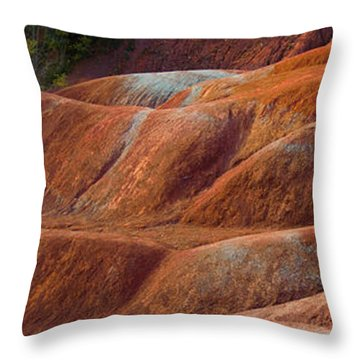 Rusty Land Throw Pillow by Barbara McMahon