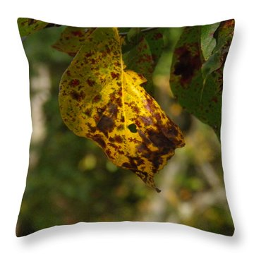 Throw Pillow featuring the photograph Rusty Leaf by Nick Kirby