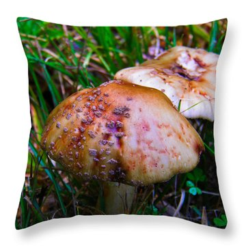 Rusty Mushroom Throw Pillow