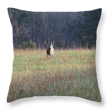 Rut Throw Pillow by Dan Sproul