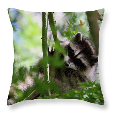 Rut Row I'm Falling Throw Pillow