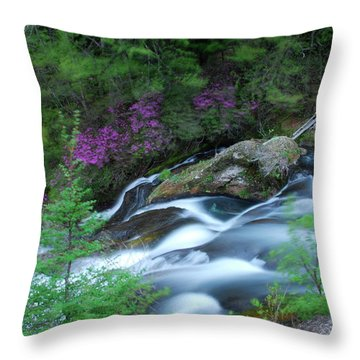 Ryuzu Ruminations Throw Pillow