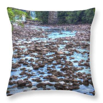 Sacandaga River Throw Pillow by Darleen Stry
