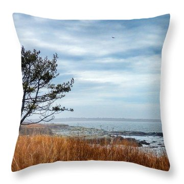 Sachuest Winter Afternoon Throw Pillow