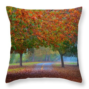 Sacramento River Bike Trail Throw Pillow
