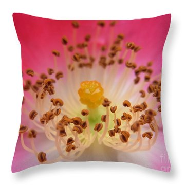 Sacred Adoration Throw Pillow
