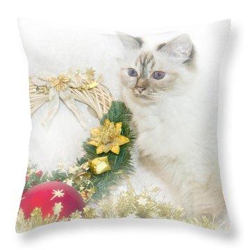 Sacred Cat Of Burma Christmas Time Throw Pillow by Melanie Viola
