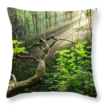 Throw Pillow featuring the photograph Sacred Grove by Dustin  LeFevre