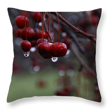 Sad Baby Berry Throw Pillow