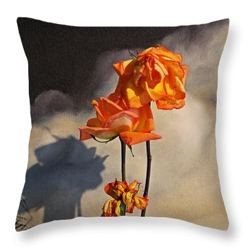 Sad To See You Go Throw Pillow by John Stuart Webbstock