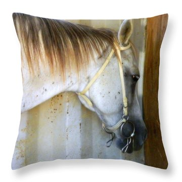 Throw Pillow featuring the photograph Saddle Break by Kathy Barney