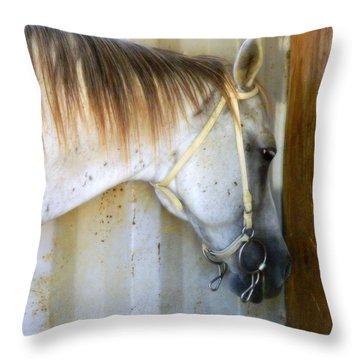 Saddle Break Throw Pillow by Kathy Barney
