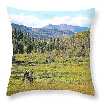 Saddle Mountain Throw Pillow