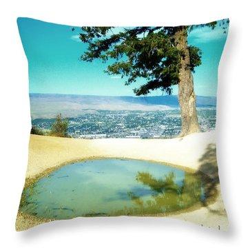 Saddle Rock Oasis Throw Pillow
