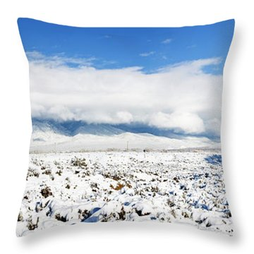 Sage Covered With Snow With Taos Throw Pillow