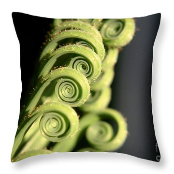 Sago Palm Leaf - 3 Throw Pillow by Kenny Glotfelty