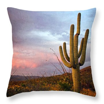 Saguaro At Dusk  Texture Throw Pillow