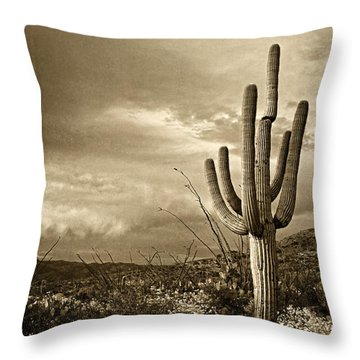 Saguaro At Dusk  Tint Throw Pillow