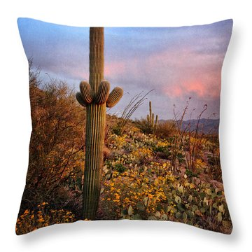 Saguaro At Sunset  Tex Throw Pillow