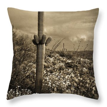 Saguaro At Sunset Tint Throw Pillow
