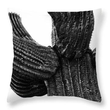 Saguaro Cactus Black And White 3 Throw Pillow