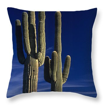 Saguaro Cactus Sunset Arizona State Usa Throw Pillow