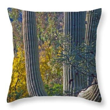 Saguaro Fall Color Throw Pillow