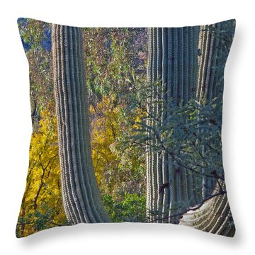 Saguaro Fall Color Throw Pillow