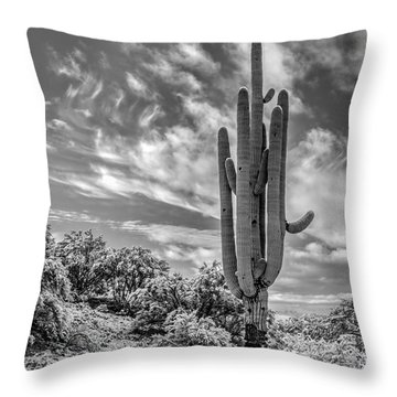 Saguaro In Desert Snow Throw Pillow