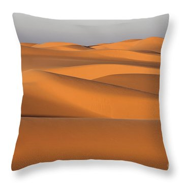 Sahara Desert Dunes Throw Pillow by Robert Preston