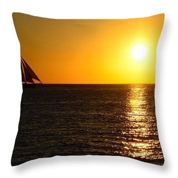 Sailing To The Sun Throw Pillow by Pamela Blizzard