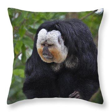 Saki Monkey Throw Pillow