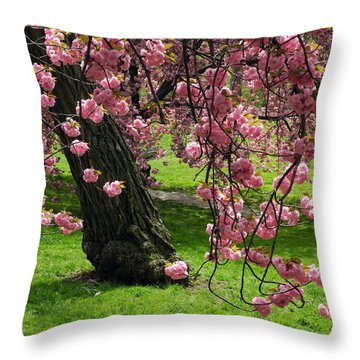 Sakura Blossom Throw Pillow by Yue Wang