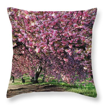 Sakura In Central Park Throw Pillow by Yue Wang