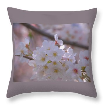 Sakura Throw Pillow by Rachel Mirror