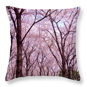 Sakura Tree Throw Pillow by Andrea Anderegg