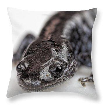 Salamander Throw Pillow