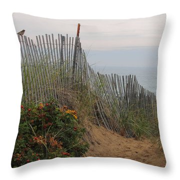 Salisbury Beach Throw Pillow