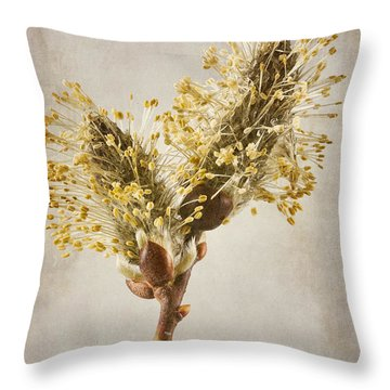 Salix Caprea Kilmarnock Catkins Throw Pillow