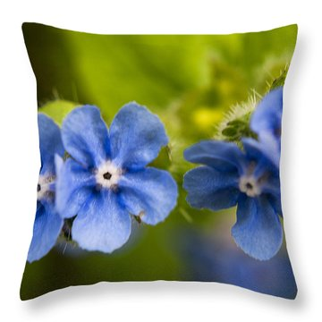 Salix Eugenes Throw Pillow