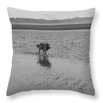 Throw Pillow featuring the photograph Sally V by Cassandra Buckley